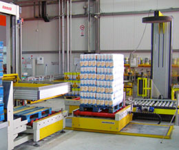 Pallet Shuttle Conveyor