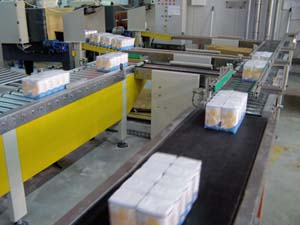 Traffic management conveyor system